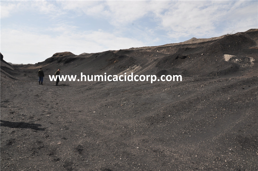 Leonardite Resources Humic Acid