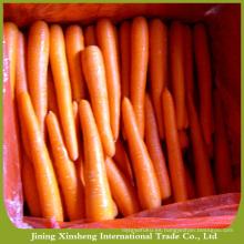 Zanahoria orgánica