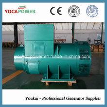 AC Бесщеточный генератор переменного тока, используемый в дизель-генераторном агрегате мощностью 800 кВт