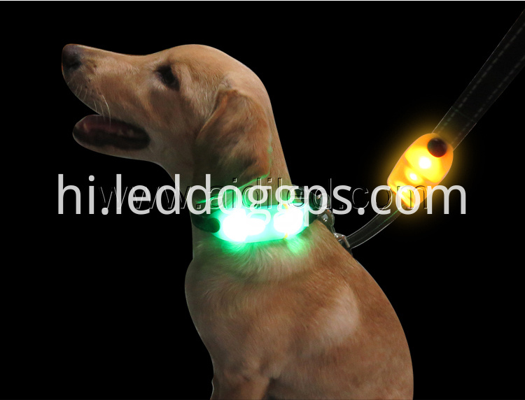Rechargeable Led Dog Leash