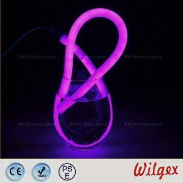 360 Neon flex rope lights for accessing lighting