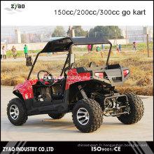 Adult Racing Go Kart à vendre véhicule utilitaire de China Factory Zyao