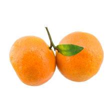 chinesische Frucht / chinesischer Shatang Mandarine