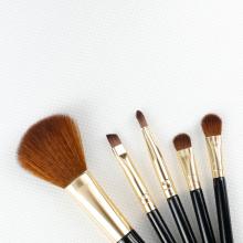 Mini Makeup Brush Portable Set
