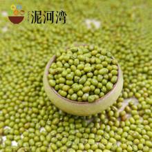 2016 nueva cosecha de frijol mungo verde para los brotes en la venta caliente, origen chino