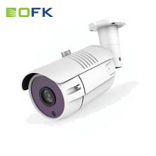 Câmera ip sem fio do preço barato proteção contra raios com bateria