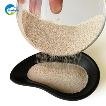 Embalagem de vácuo 10 kg de fermento seco 10 / 20billion