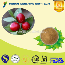 Best quality of Butchers broom P.E. powder 10% Ruscogenin CAS: 472-11-7