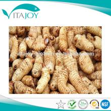 Fuente de la Fábrica Rhizom Gastrodiae PE, Gastrodin Powder, Gastrodin