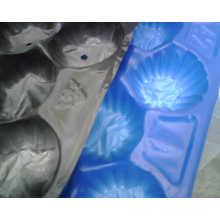 Aprobación de FDA / SGS Termoconformado al vacío Termoformado Tamaños estándar de Europa de empaquetado Bandejas de frutas PP para Apple Hecho en China