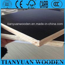 O filme do núcleo do álamo de China enfrentou a madeira compensada