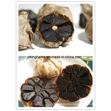 Black Garlic / Antioxidant / Enhancing Immunity Powder