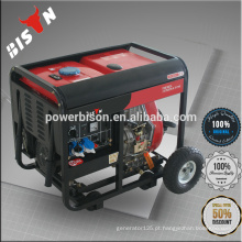 BISON (CHINA) 12kw Gerador Diesel
