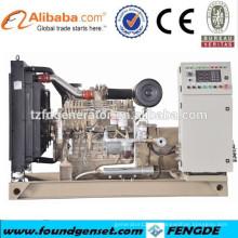 Fabricante famoso fornecimento de energia elétrica diesel gerador de 80kw