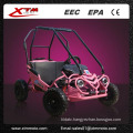 Pink Cooler Selling Kids Buggy Mini Go Kart with Reverse