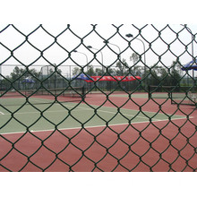 Galvanzied+PVC Coated Chain Link Fence