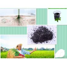 Fertilizante de extrato de algas orgânicas