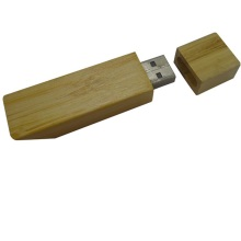 Free samples Exo-friendly OEM Wood USB Pen Drive