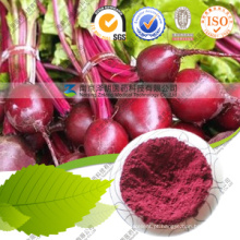 Abastecimento de Fábrica Natural Red Beet Root Powder