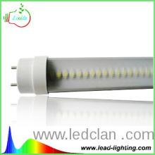 Low price chinese tube light