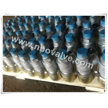 Bs Screwed Water Pressure Safety Valve (PSV-1)