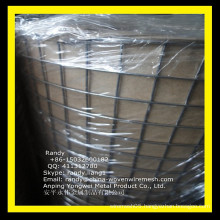 YW-- China supply galvanized welded wire mesh 2*2/Skype: randy.liang1
