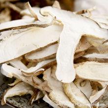 Fabricação de fatia de cogumelos secos mais vendidos