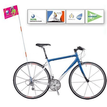 Custom Promotional Bike Flag W/ Logo Printing