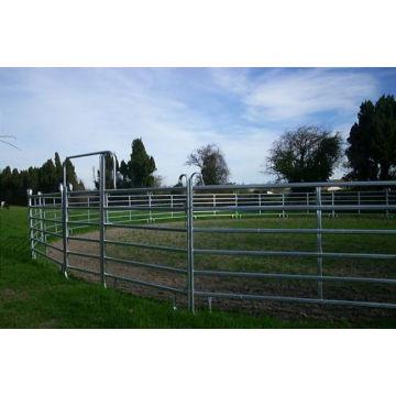 Galvanized Pipe Horse Fence