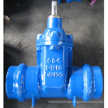 Resilient Seated Gate Valves Socket Ends
