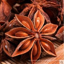 Colheita do outono do anis da estrela para a venda, melhor preço, pó do anis, quebrada