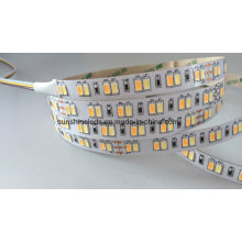 Double Color Warm White+ Pure White SMD5630 CCT Adjustable LED Strip Light