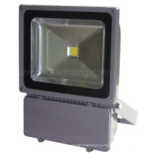 80W COB LED Tunnel Flood Light (JP83780COB)