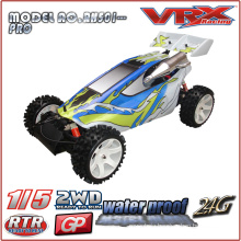 1/5 Gas Powered RTR Buggy, 2WD Nitro Buggy, large scale rc model car