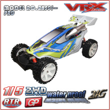 1/5 carro do gás Powered RTR Buggy, 2WD Nitro Buggy, grande escala modelo rc