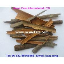 Cassia cassé, épice chinoise