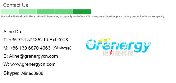 72V LiFePO4 Auto Motorcycle Rickshaw Battery