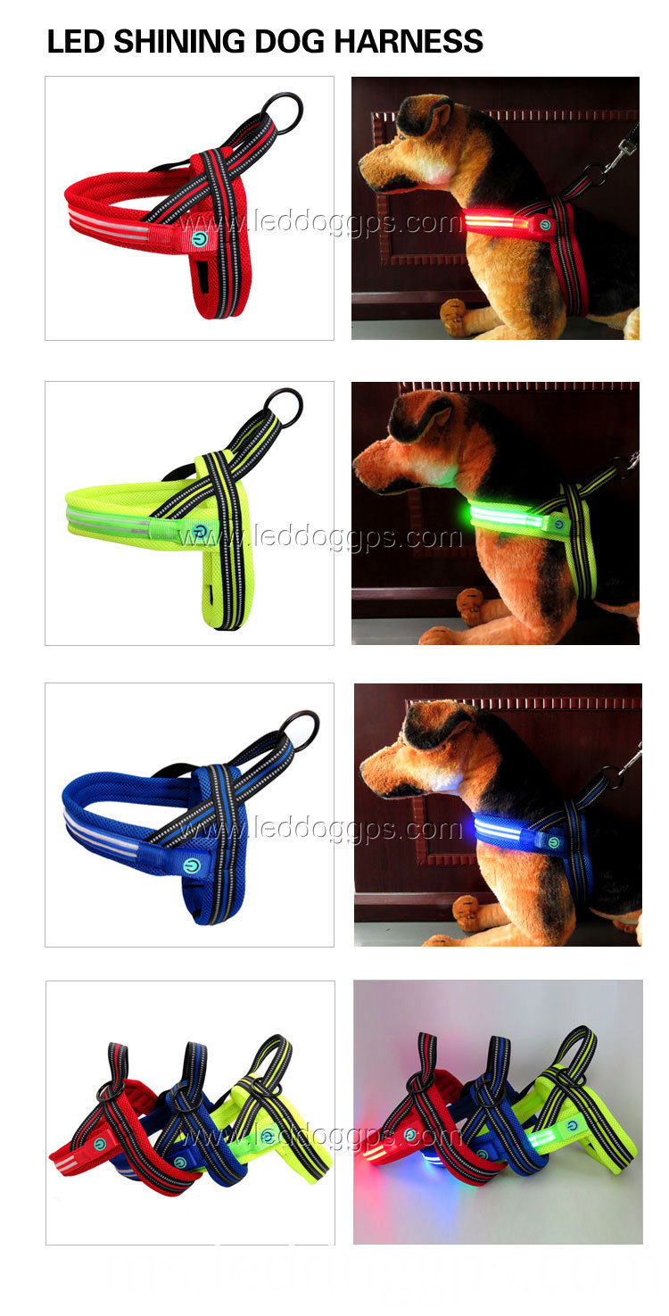 Led Pet Harness