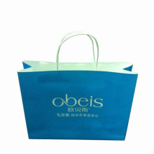Printed Color Paper Gift Shopping Bag (SW402)