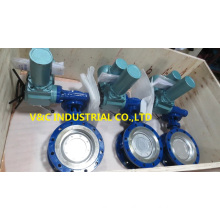 Flange Butterfly Valve with Motor Actuator