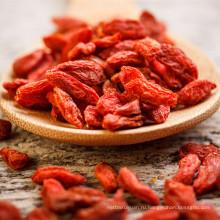 Бесплатный образец 750granule/50г ягоды goji с самым лучшим ценой