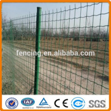 Factory direct high quality Euro fence for villa