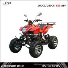 250ccm EWG Quad ATV Zea-21-08