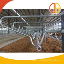 establos vacíos cubículos de ganado establos separados para ganado vacuno Deba
