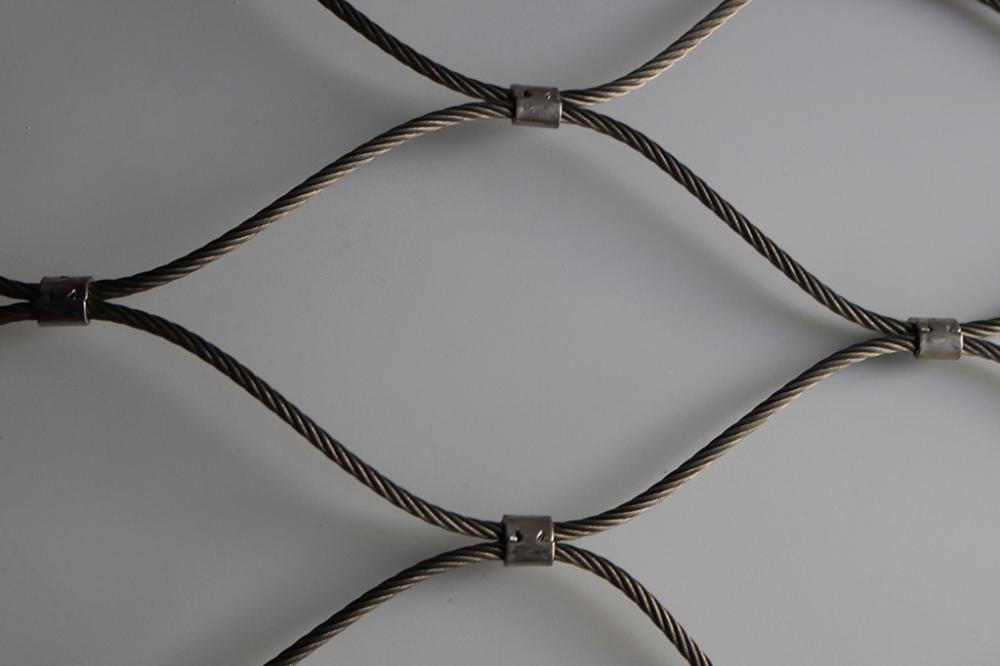 Rostfritt stål Ferrelled Aviary Wire Rope Cable Zoo Mesh