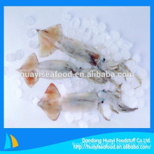 hot sale frozen clean baby squid with competitive price