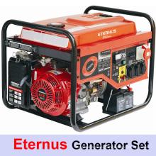 Стабильный красный портативный генератор (BH8500)