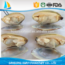 rush to purchase 2016 best season short necked clam in shell/baby clam with shell