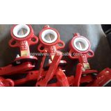 PTFE butterfly valve