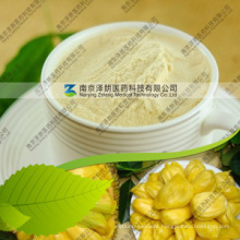 Manufacturer Supply Natural Jackfruit Powder